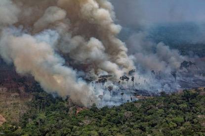 地球之肺在燃燒》亞馬遜雨林大火中,我們不得不關心的事