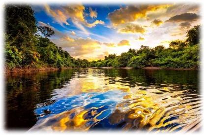 讓我們一起攜手愛地球,共同守護家園
